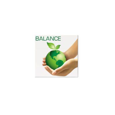 BALANCE-CHIP for food energizing and harmonizing